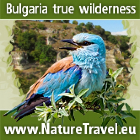 Wildlife photographers from Bulgaria exchange banners