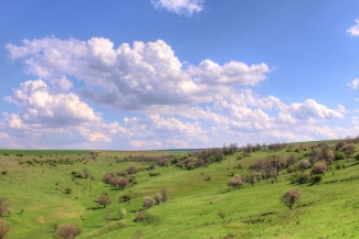 Landscapes from Suha reka, Pastures near to